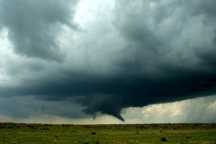 tornadojagers.nl